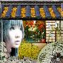 Japanese garden challenge