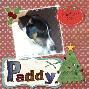 Paddy 1