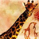 Giraffe by Half