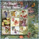 My magic fairies.craft