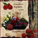 Grandma's homemade jam