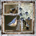 Songbird.craft