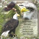 Prayer to the Eagle