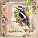 Happy Birthday Anne