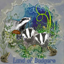 Land of Badgers