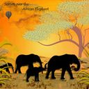 sunset over the african elephant