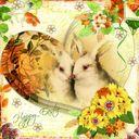 Easter card challenge